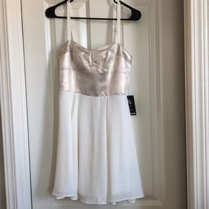 NWT Express metallic chiffon dress